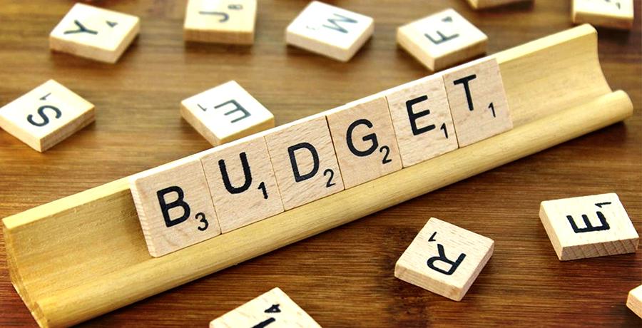 Programming Monitor Budget