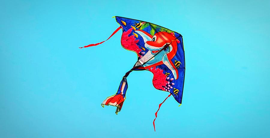 Freedom In Art