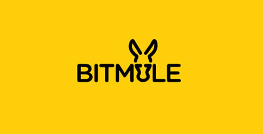 Bitmule Logo- Inspirational Flat Logo Designs