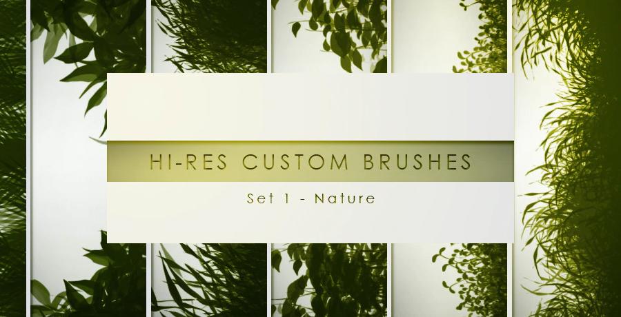 Paid Photoshop Brushes - 30 Hi Res Custom Brushes