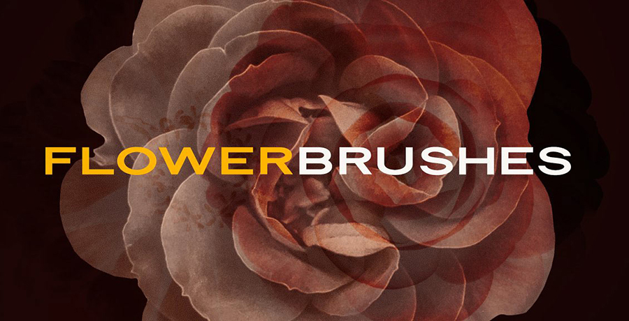 Free Photoshop Brushes - Elegant Flower