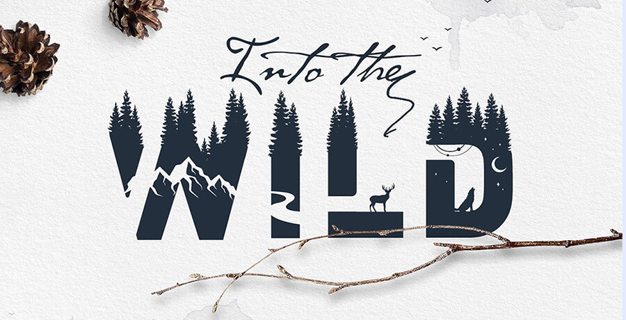 Good Font For Poster - Into The Wild