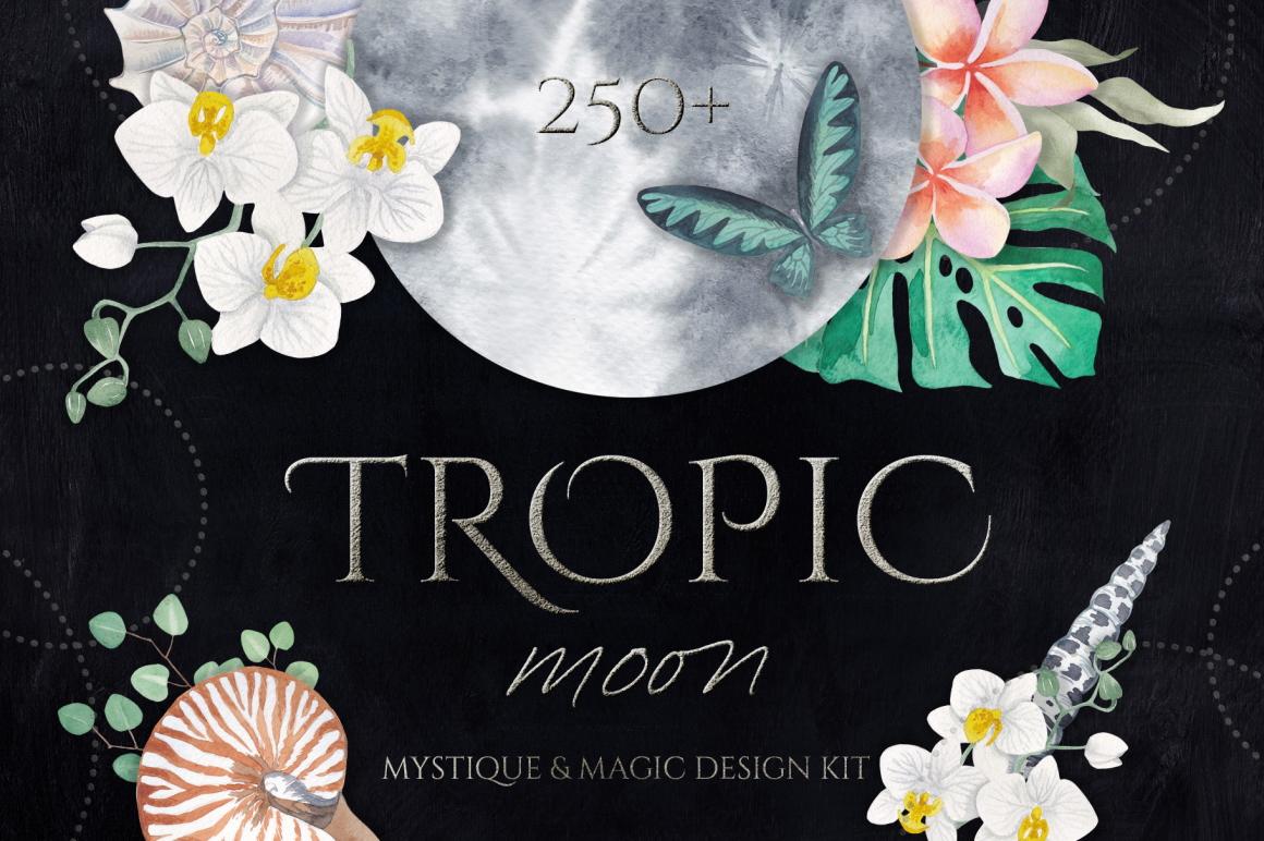 Best Premium Logo Design Font - Tropic Moon