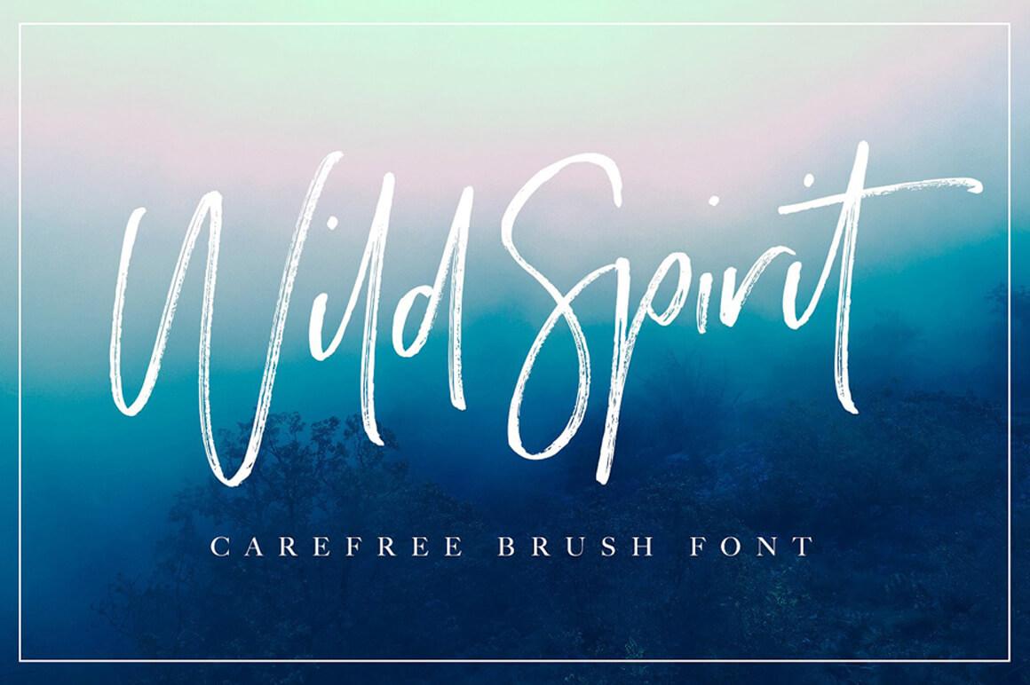 Graffiti Font - Wild Script